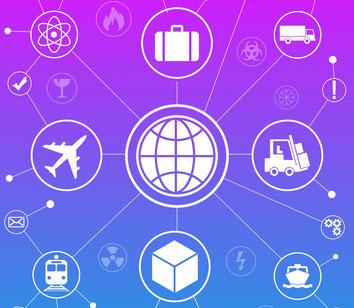 Expert en Logistique globale
