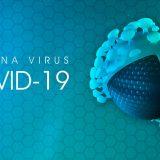 Coronavirus CERL